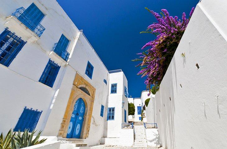 tunisia-tunis-sidi-bou-said-street-scene